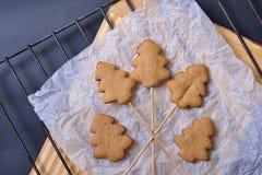 Biscotti del pan di zenzero sui bastoni Fotografie Stock