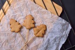 Biscotti del pan di zenzero sui bastoni Immagini Stock Libere da Diritti