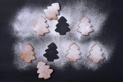 Biscotti del pan di zenzero in zucchero in polvere Immagine Stock Libera da Diritti