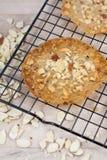 Biscotti del pizzo della mandorla Immagini Stock