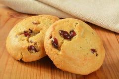 Biscotti dell'arancia del mirtillo rosso Fotografia Stock