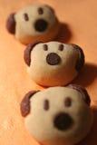 Biscotti dell'orso Fotografia Stock