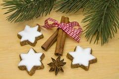 Biscotti della cannella Immagini Stock