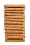 Biscotti della cannella Fotografia Stock