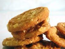 Biscotti della noce di macadamia Fotografia Stock