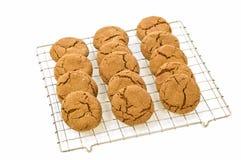 Biscotti dello zenzero Immagini Stock Libere da Diritti