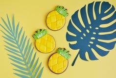 Biscotti di Apple del pino con stile naturale dell'alimento delle foglie tropicali Immagine Stock