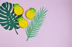 Biscotti di Apple del pino con stile naturale dell'alimento delle foglie tropicali Fotografia Stock
