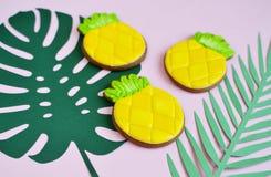 Biscotti di Apple del pino con stile naturale dell'alimento delle foglie tropicali Immagini Stock