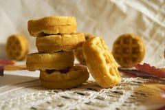 Biscotti di burro con una superficie ondulata Immagine Stock Libera da Diritti