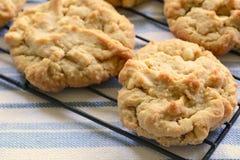 Biscotti di burro di arachidi di recente al forno Fotografia Stock Libera da Diritti
