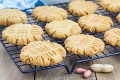 Biscotti di burro di arachidi di recente al forno su uno scaffale di raffreddamento fotografia stock