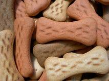 Biscotti di cane fotografia stock libera da diritti