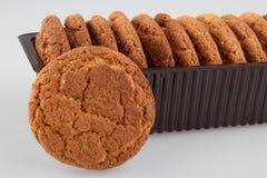 Biscotti di farina d'avena Immagini Stock Libere da Diritti