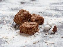 Biscotti di farina d'avena casalinghi con la noce di cocco Immagini Stock Libere da Diritti