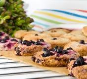 Biscotti di farina d'avena casalinghi freschi dal forno fotografia stock