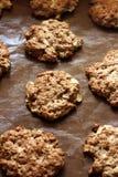 Biscotti di farina d'avena con le mele Fotografia Stock