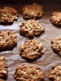Biscotti di farina d'avena con le mele Immagine Stock Libera da Diritti