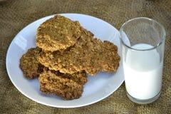 Biscotti di farina d'avena freschi con latte Fotografia Stock Libera da Diritti
