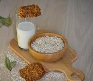 Biscotti di farina d'avena freschi con latte Fotografie Stock