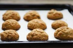 Biscotti di farina d'avena sulla carta di cottura immagine stock