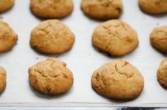Biscotti di farina d'avena sulla carta di cottura fotografia stock