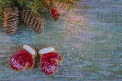Biscotti di festa di Natale fotografie stock