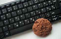Biscotti di Internet Immagine Stock