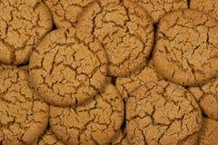 Biscotti di melassa Immagine Stock