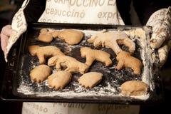 Biscotti di natale di cottura immagine stock libera da diritti