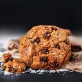 Biscotti di pepita di cioccolato su fondo scuro con il posto per testo Immagine Stock