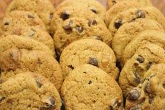 Biscotti di pepita di cioccolato succulenti Fotografia Stock Libera da Diritti