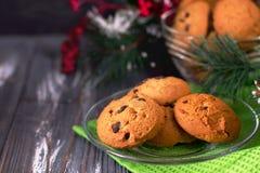 Biscotti di pepita di cioccolato con abete Fotografie Stock Libere da Diritti