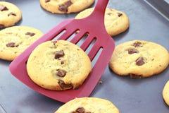 Biscotti di pepita di cioccolato cotti freschi Fotografie Stock Libere da Diritti