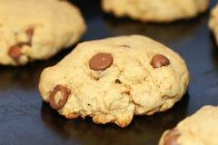 Biscotti di pepita di cioccolato di cottura Immagine Stock Libera da Diritti