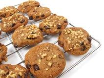 Biscotti di pepita di cioccolato su una cremagliera di raffreddamento Immagini Stock Libere da Diritti