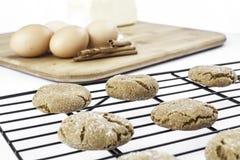 Biscotti di raffreddamento con gli ingredienti Fotografia Stock Libera da Diritti