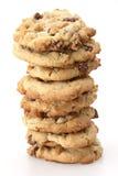 Biscotti di recente cotti Immagine Stock