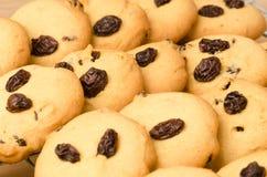 Biscotti di uva passa Fotografia Stock