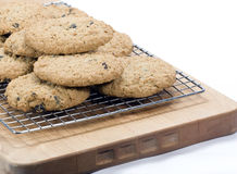 Biscotti di uva passa della farina d'avena fotografie stock libere da diritti