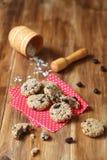 Biscotti di uva passa della farina d'avena fotografia stock