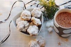 Biscotti e cioccolata calda di farina d'avena Fotografia Stock
