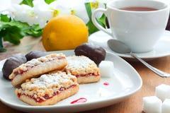 Biscotti e prugne secche in cioccolato Fotografia Stock Libera da Diritti