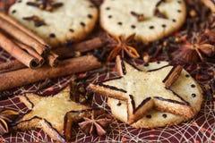 Biscotti e spezie dello zenzero: cannella, chiodi di garofano, anice Immagini Stock Libere da Diritti