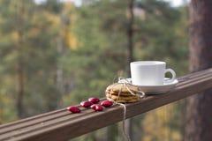 Biscotti e tazza di caffè dello zenzero Immagini Stock