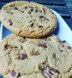 Biscotti fatti a mano Fotografie Stock Libere da Diritti