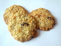Biscotti fatti a mano domestici Fotografie Stock Libere da Diritti