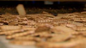 Biscotti finiti fuori sul trasportatore stock footage