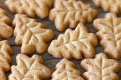 Biscotti a forma di dell'albero di Natale Immagine Stock