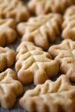 Biscotti a forma di dell'albero di Natale Immagini Stock